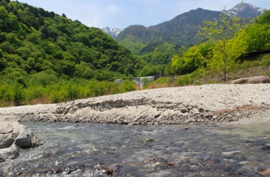 篠沢大滝キャンプ場 山梨県