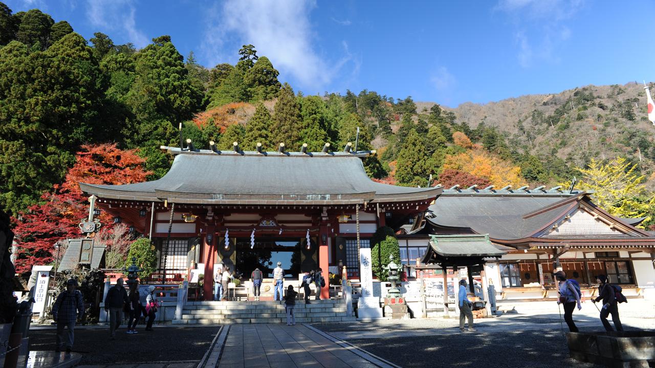 神奈川の丹沢・大山登山