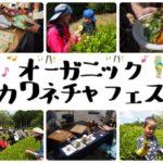 川根の大自然を満喫する、ナチュラル・オーガニックなライフスタイルイベント『オーガニック川根茶フェス2019』を開催