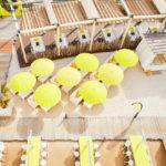 新宿の屋上でバーベキュー・ビアガーデン・ビーチカフェを楽しめる「イエロービーチ」が登場