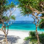 奄美大島の魅力に迫る!沖縄よりも近い穴場リゾート