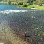晴れているならまったり釣ろう!晴天の渓流釣りで釣果が出にくい理由とは