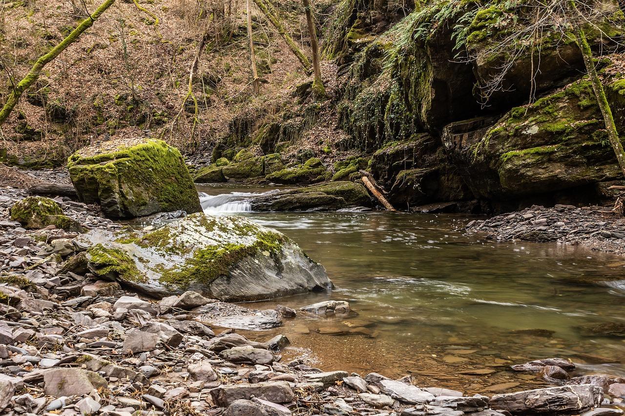 雨上がりの渓流の水を読む