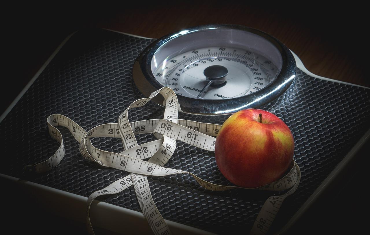 栄養食事制限ダイエット