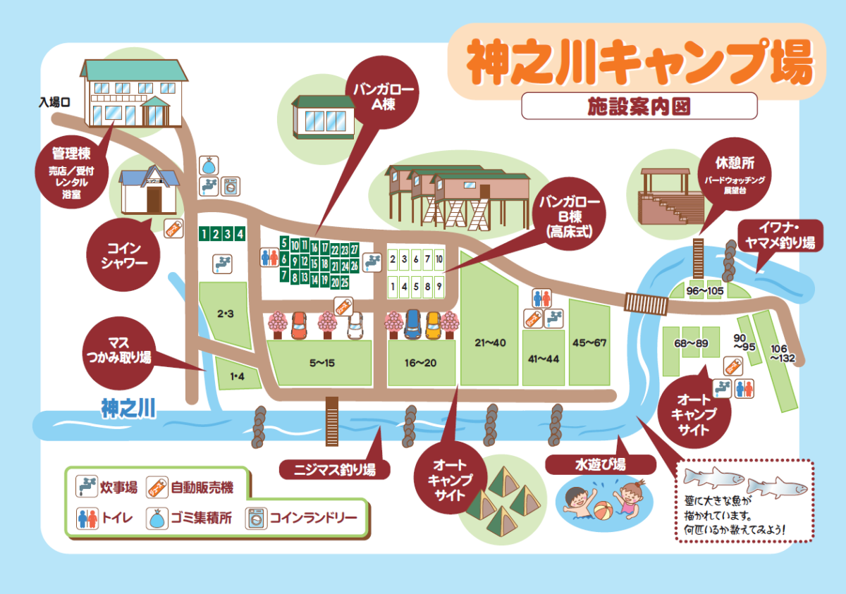 神之川キャンプ場 神奈川県 子連れ川遊び