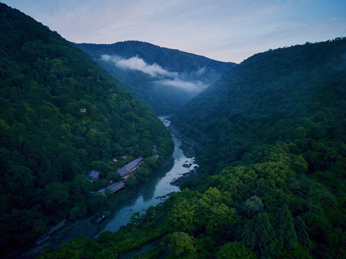 星のや京都「野遊び植樹会」開催。森林景観の維持・継承を目的とした新しい取り組み