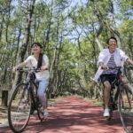 宮崎シーガイアに泊まって楽しむ人気No.1アクティビティー!ママチャリからロードバイクまで品揃え抜群のレンタサイクルで行くべき厳選スポット5選