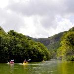 西表島のエコツアーがすごい!神々が住む亜熱帯ジャングルの楽園へ