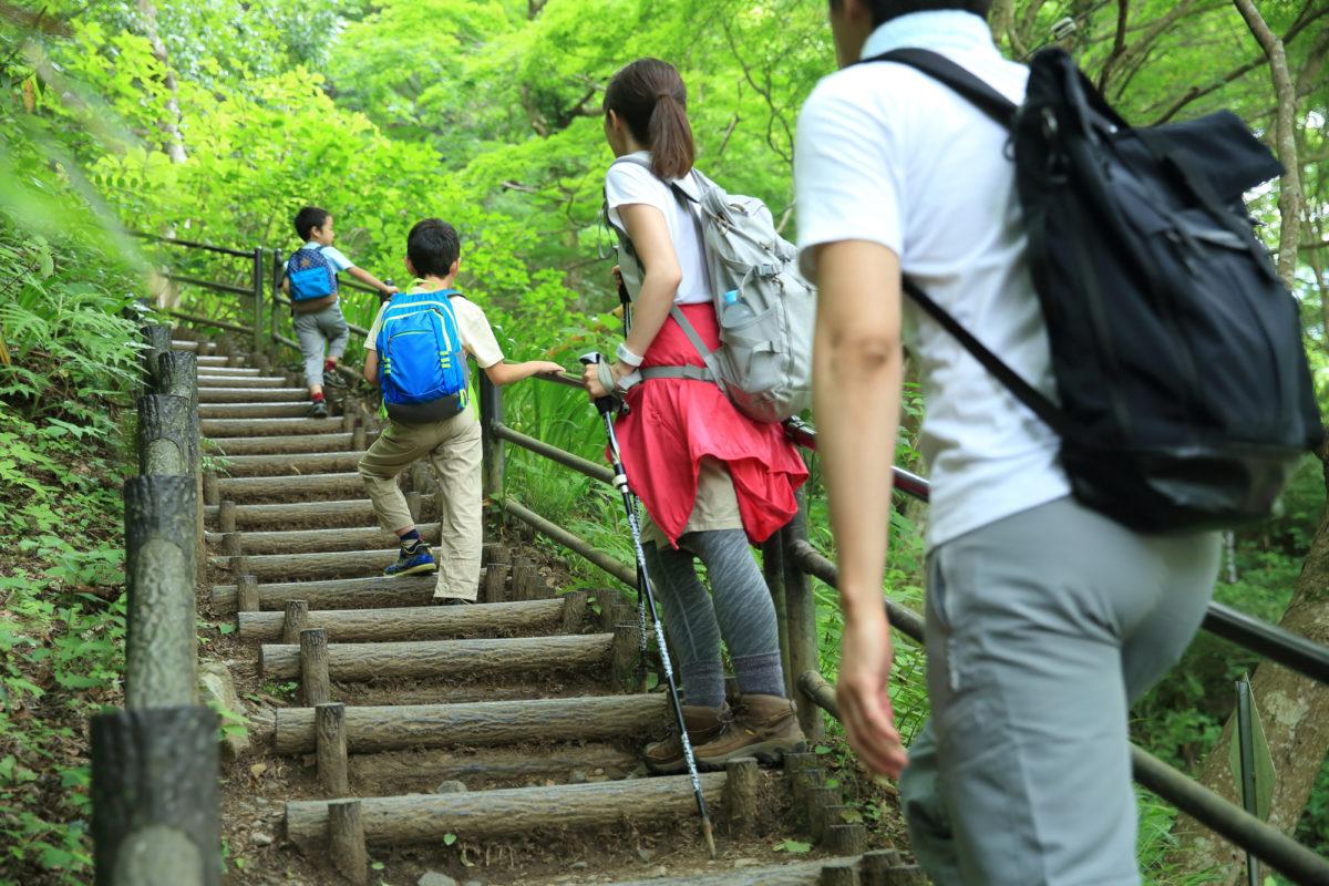 【親子登山に何を持っていく?】親子登山に持っていくべきアイテムはコレ!