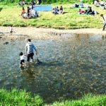 今年はどこに行く?鹿児島でおすすめの川遊びスポットをご紹介