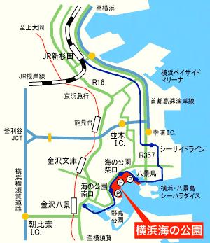 バーベキュー 横浜海の公園 横浜海の公園バーベキュー場
