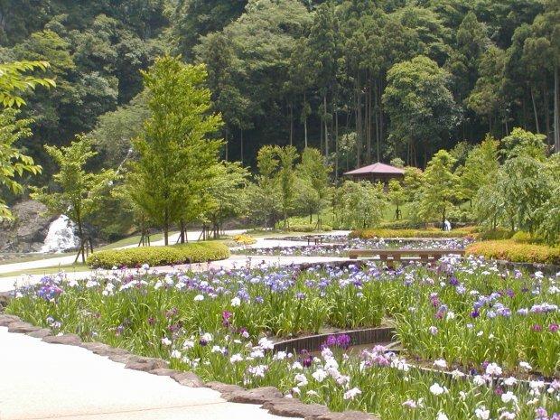 長崎 川遊び 河川公園やすらぎの里