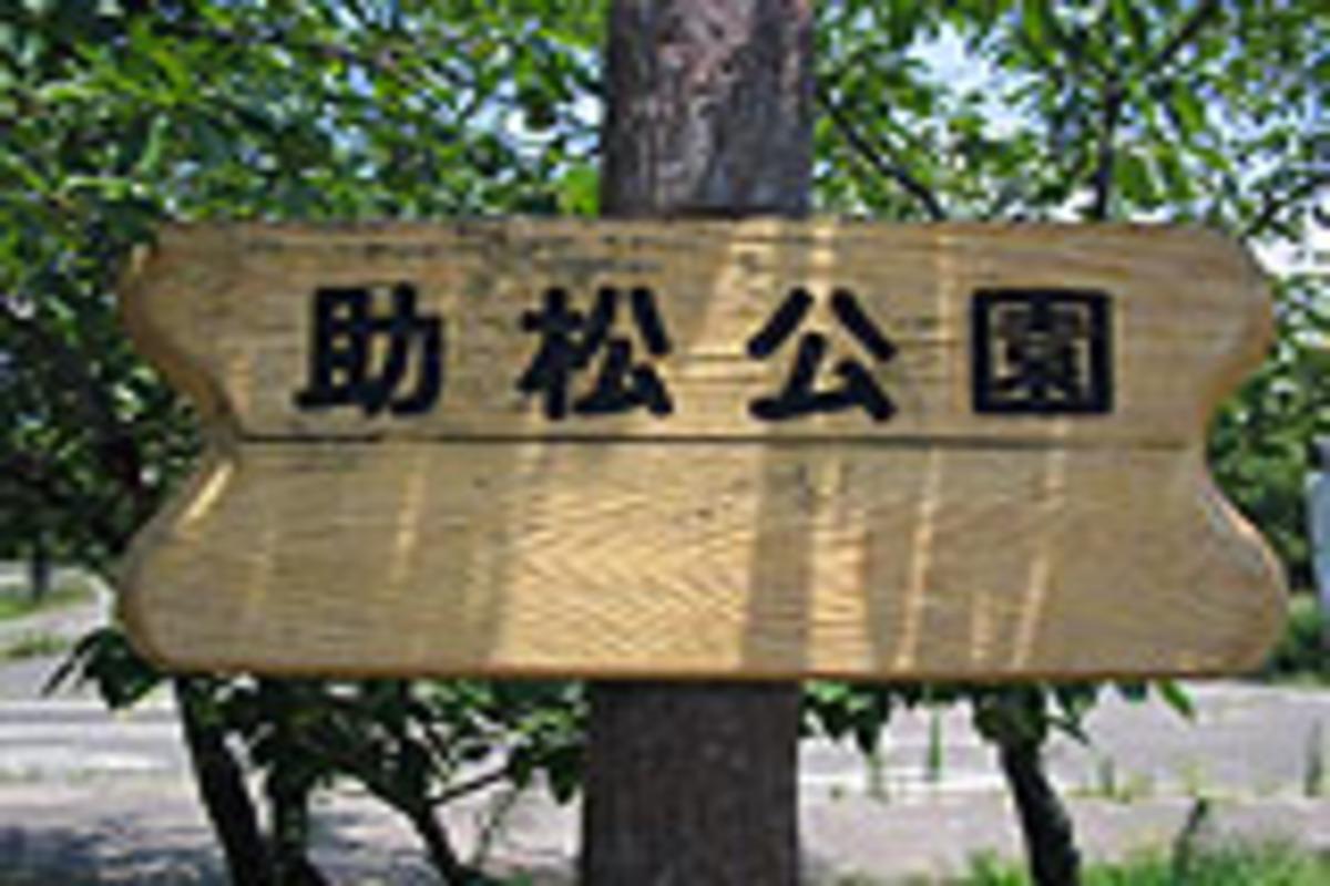 助松公園 助松プール 大阪