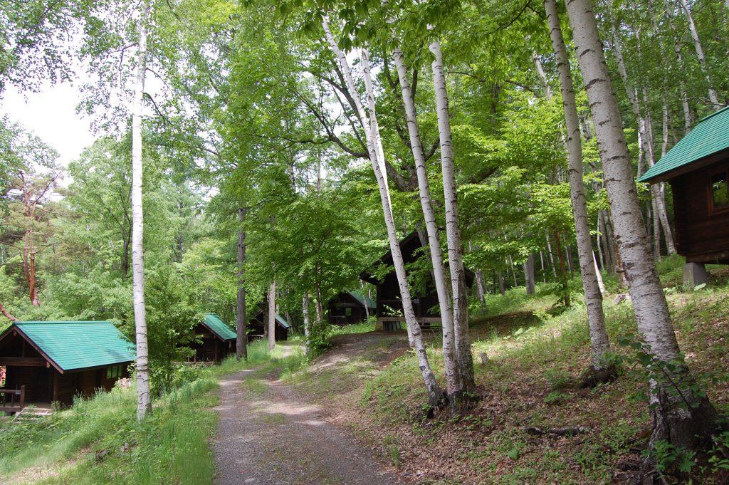 高ソメキャンプ場は美しい白樺や星空が自慢!家族で満喫したい4つの魅力