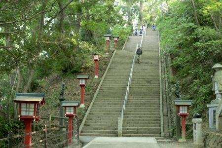 四季折々の自然が楽しめる高尾山のおすすめ登山コース3選
