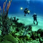神秘的なダイビングが体験できる世界のダイビングスポット