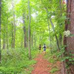 夏のスキー場で「山歩き」や「ジョギング」北海道・ルスツリゾートにSALOMON監修の新企画 『RUSUTSU TRAIL』がオープン