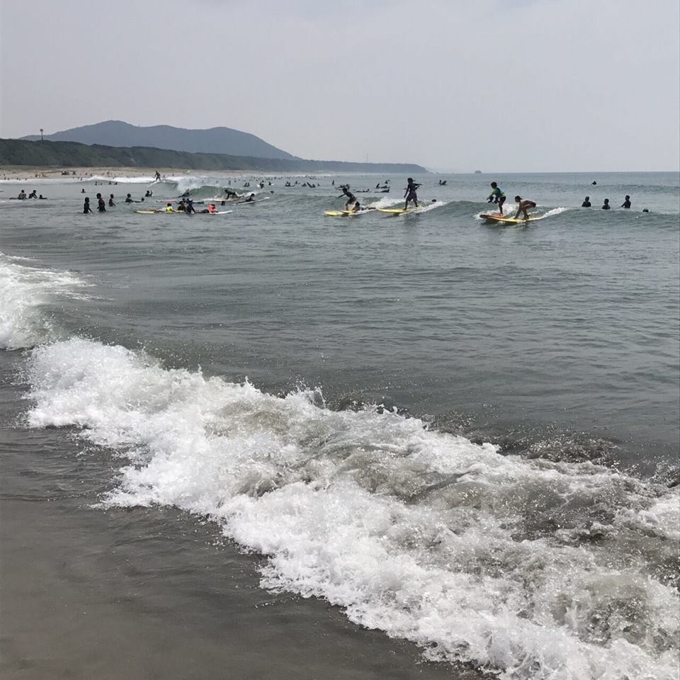 田原市 サーフィン