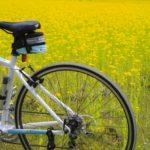 【世界最古の自転車メーカーBianchi】ビアンキカラー若草色の秘密とは?