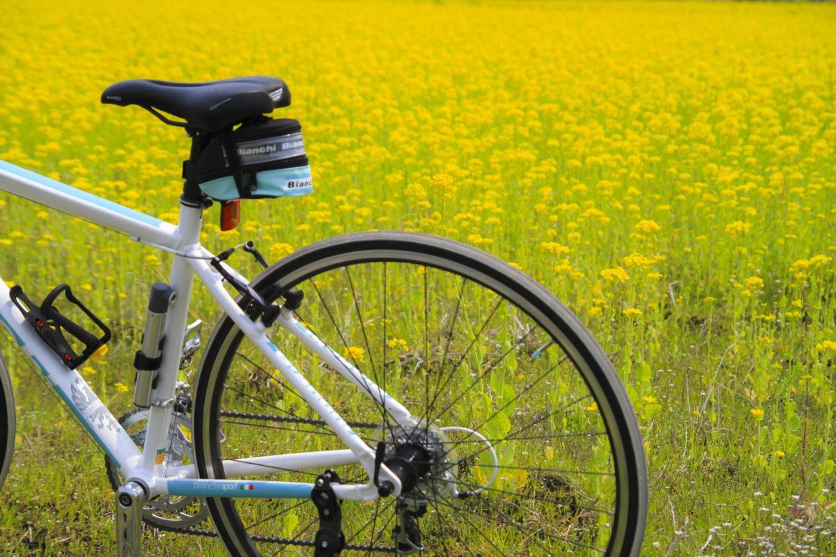 ビアンキ 自転車