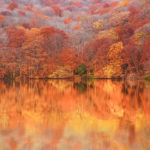 蔦沼の紅葉時期はいつ?おすすめの時間帯とアクセス方法を紹介