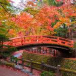 古都・京都で紅葉狩りができるおすすめスポットをご紹介!