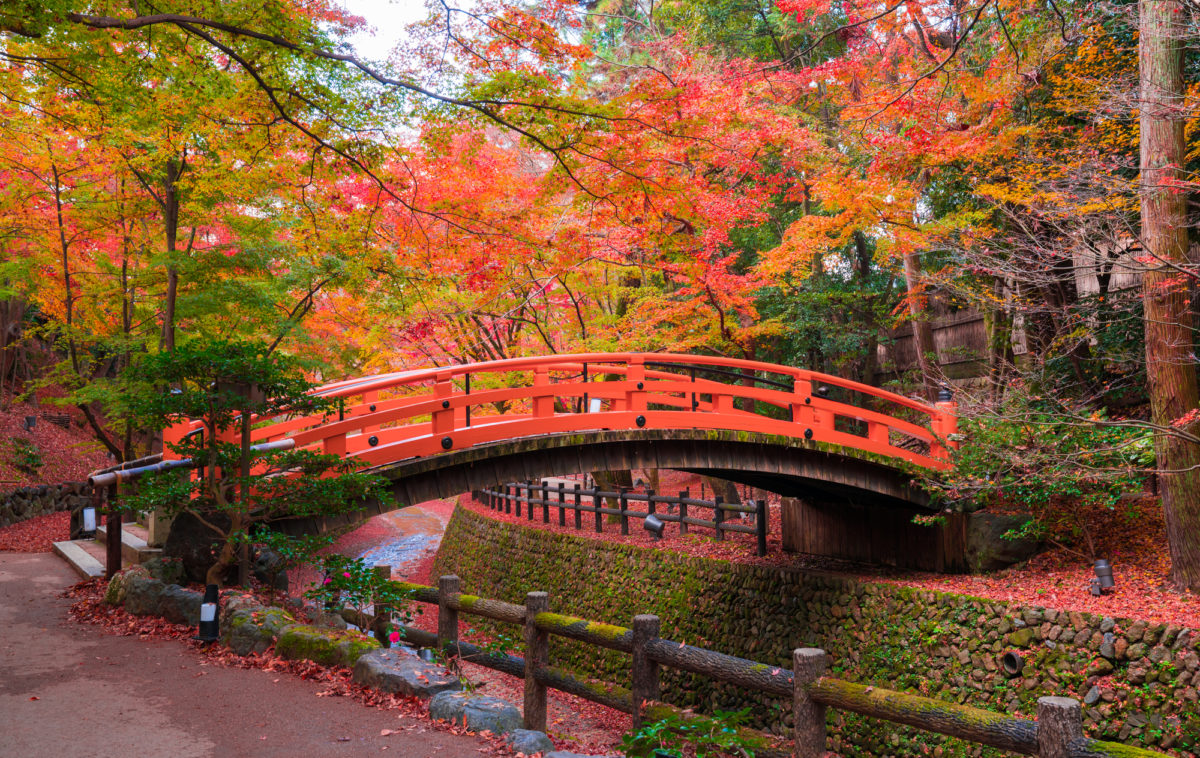 京都,紅葉狩り