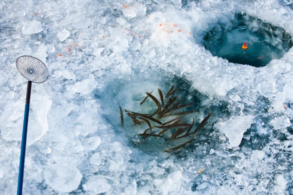 群馬 榛名湖ワカサギ釣り