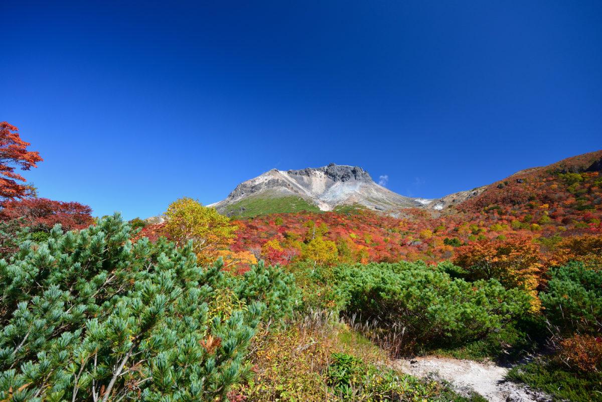 茶臼岳 紅葉 登山