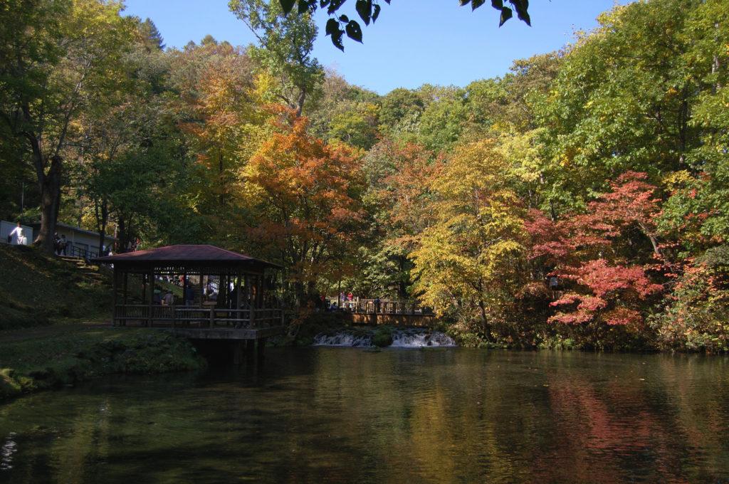 北海道 ニセコ 紅葉 ふきだし公園