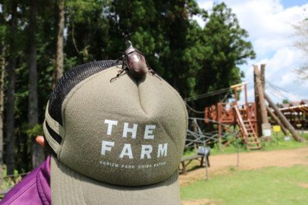 THE FARM × 酒々井プレミアム・アウトレット 農業もショッピングも一緒に楽しもうキャンペーン