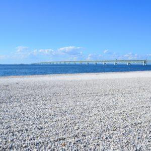 りんくう公園のマーブルビーチで遊ぼう!イベントも盛りだくさんでみんなが楽しめる