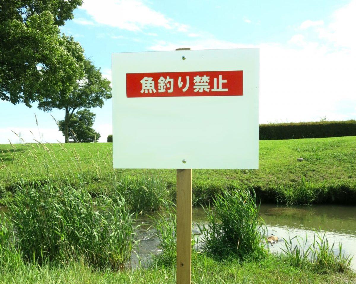 川遊び 釣り