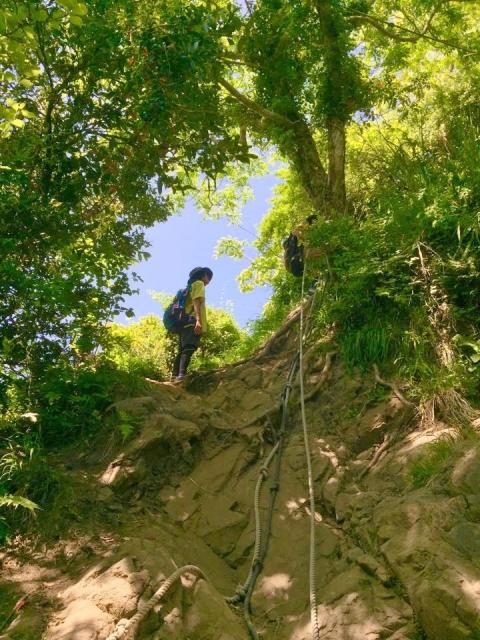 登山 ロープ