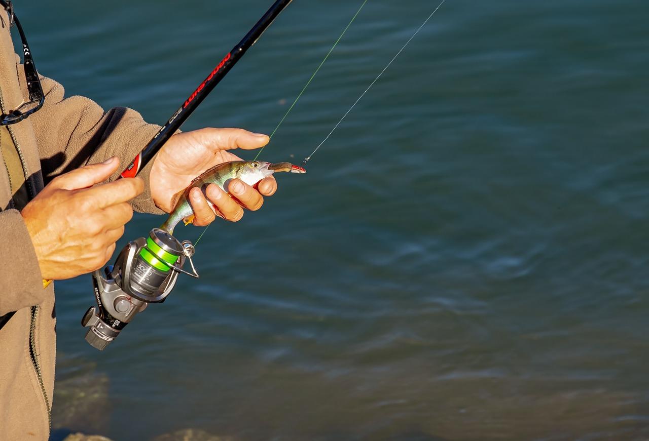 どの釣り方で釣り上げる?初心者がまず覚えておきたい釣りの種類を徹底解説