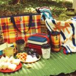 秋の行楽シーズンに最適!「オーサムストア」のプチプラアイテムでオータムピクニックを楽しもう!