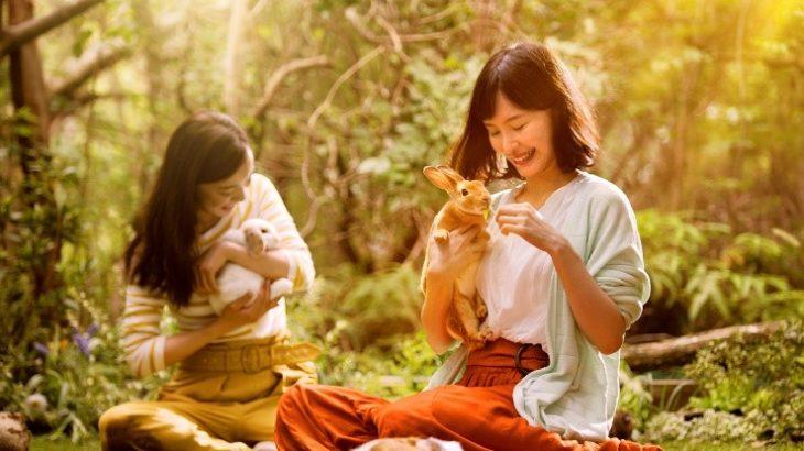 ネスタリゾート神戸、日本初「大自然の冒険テーマパーク」1周年記念、秋深まる大自然の中ネスタリゾート神戸でしか 体験できない本能を揺さぶられる最高の興奮