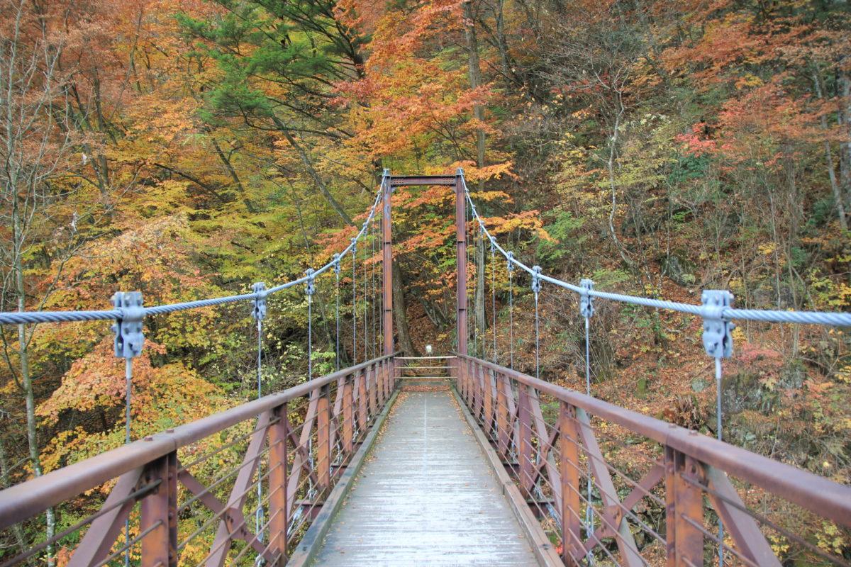 秋ハイキング