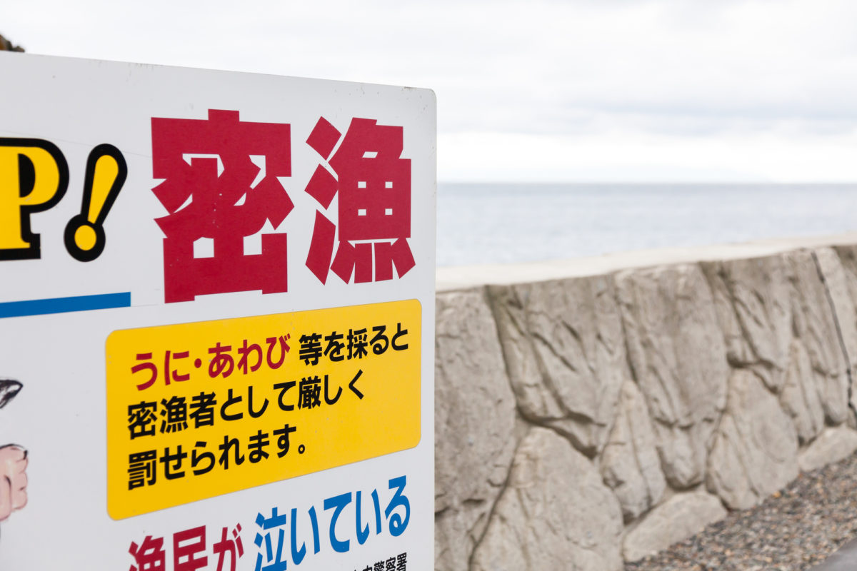 釣り 法律