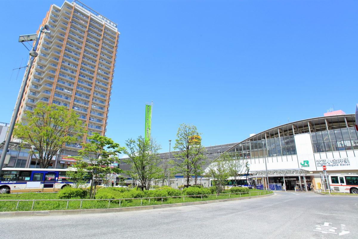 小金井公園 バーベキュー