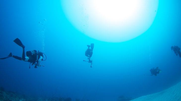 小浜島 ダイビング