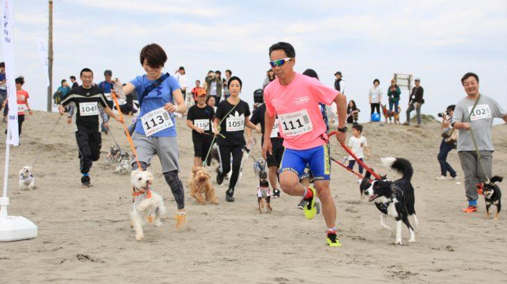 愛犬と一緒にドッグフレンドリービーチリゾートを堪能する★九十九里ビーチドッグフェスティバル2019