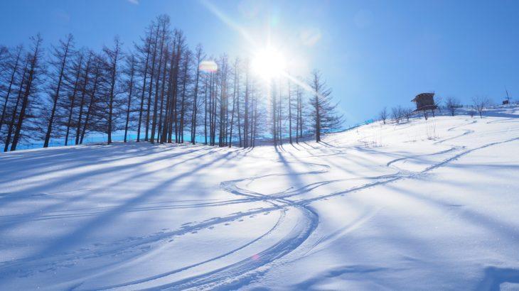 11月 スキー場 関東