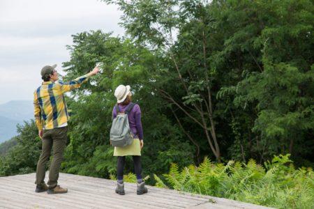 都内で秋ハイキングを楽しもう!初心者でもかんたんに歩けるコースもご紹介