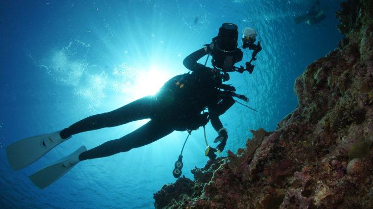 ダイビングで水中写真を撮りたい!水中写真が上手くなるコツ