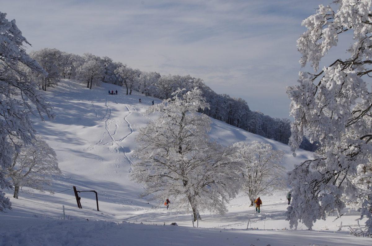 雪山 テント