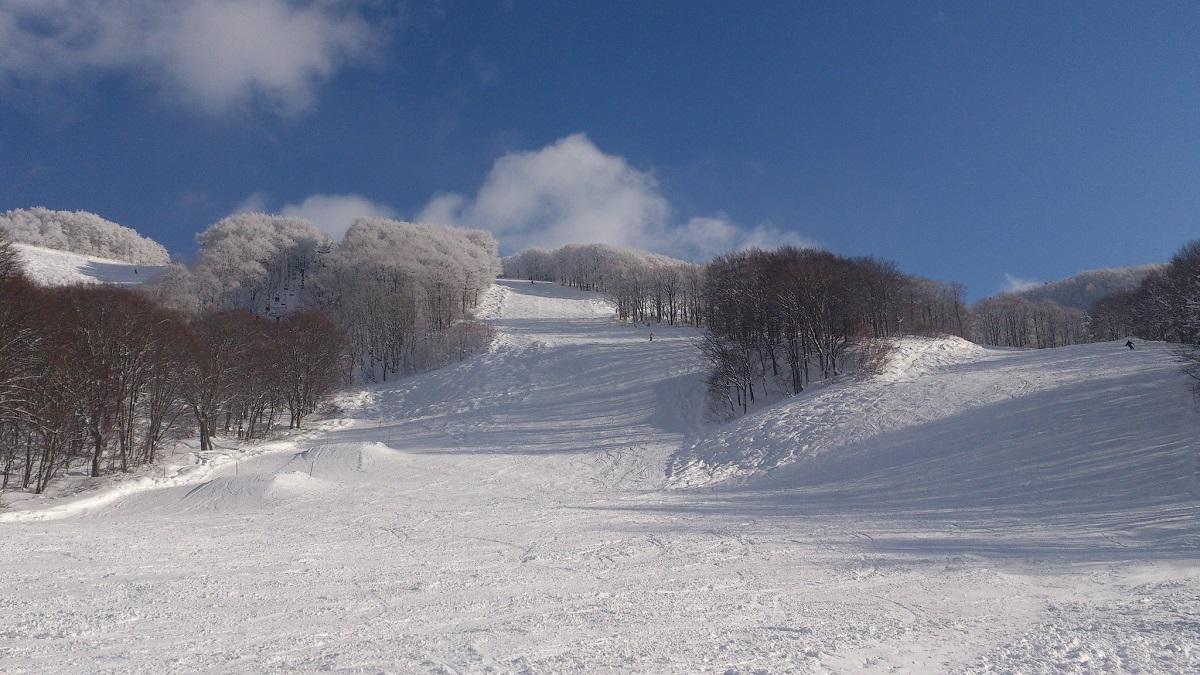 八甲田国際スキー場 11月中オープン
