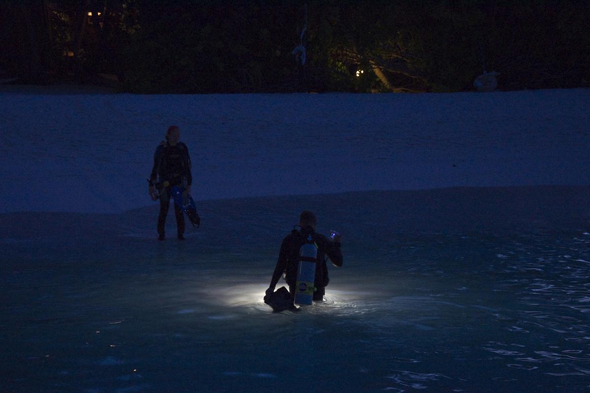 ナイトダイビング 水中ライト