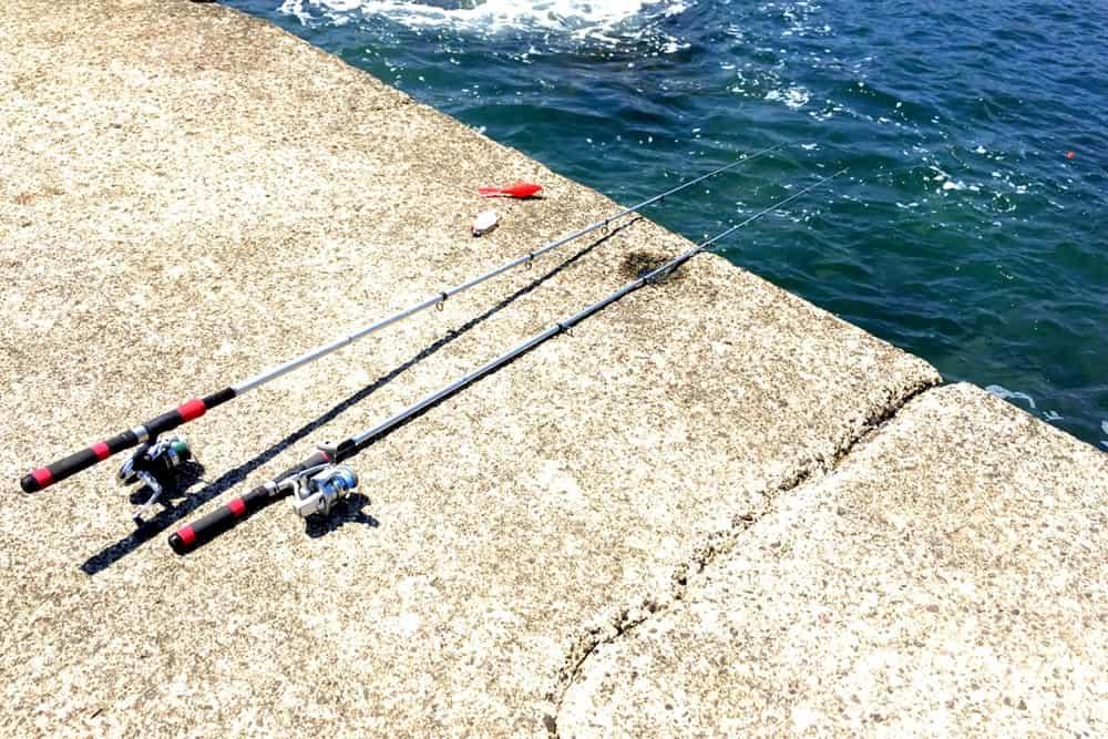 釣り 胴付き仕掛け