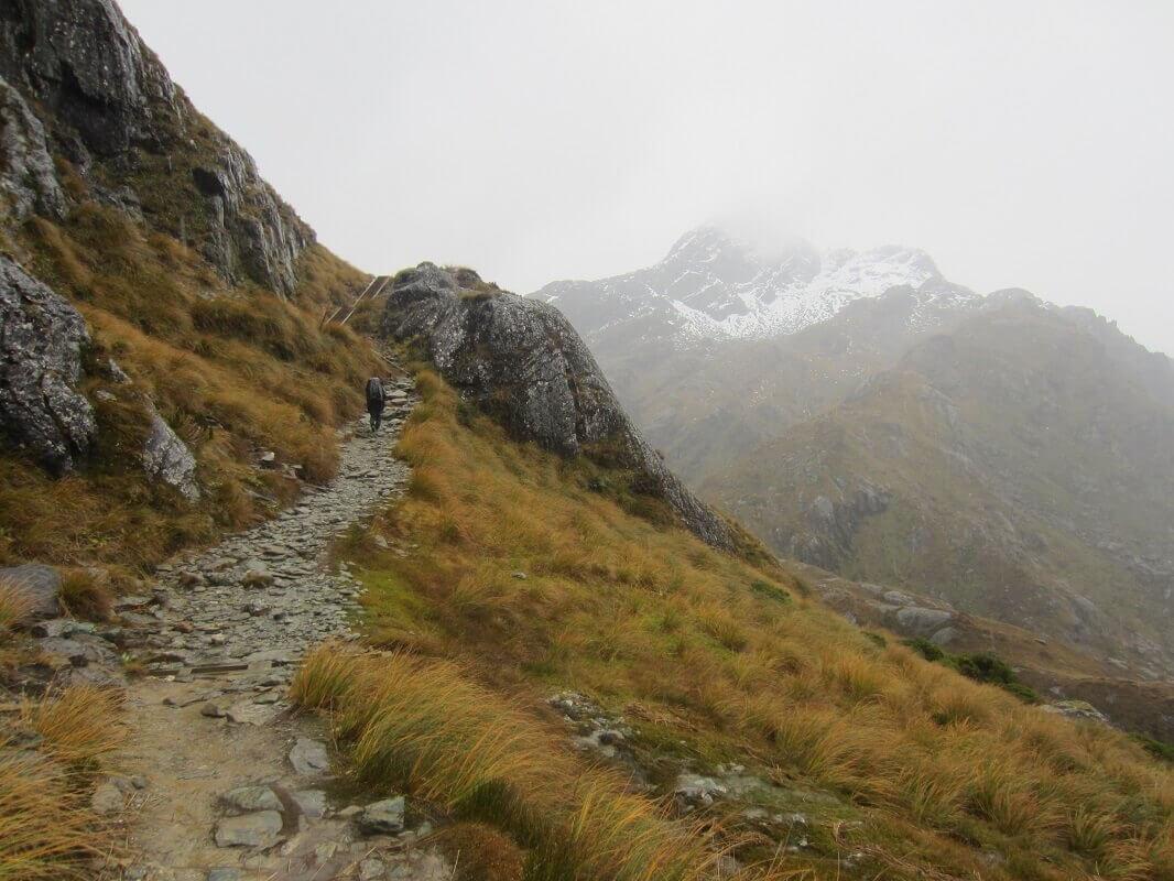 ニュージーランド トレッキング ルートバーントラック